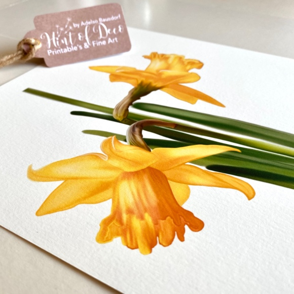 Illustrated yellow daffodils in 5 different formats, in high resolution, color profile Adobe RGB 1998