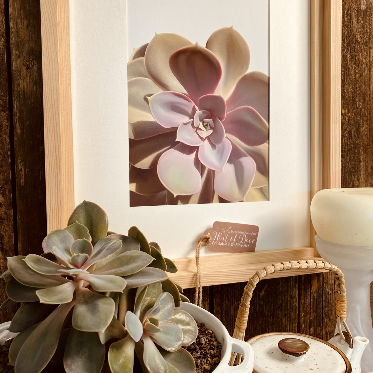 """In the 1 sample a print mounted on a neutral wooden frame. Delicate illustration of an Echeveria species called """"The Pearl of Nuremberg"""" in pastel colors with lilac tones characteristic for this exotic plant."""
